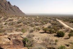 Afrikanskt landskap Arkivbild