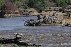 Afrikanskt landskap Royaltyfri Foto