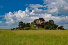 Afrikanskt savannlandskap, Tanzania Afrika Fotografering för Bildbyråer