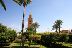 Afrique, Maroc, Marrakech - Zdjęcie Stock