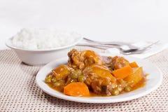Afritada del pollo con la ciotola di riso Immagini Stock Libere da Diritti
