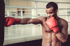 Afro American boxer Royalty Free Stock Image