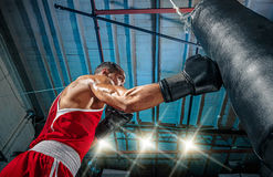 Afro american male boxer. Young man boxing workout in a fitness club. Muscular strong man on background black studio royalty free stock photo