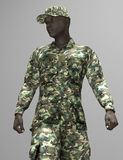 An Afro-American soldier Royalty Free Stock Image