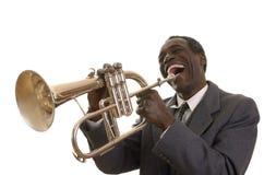 Afro--amerikan Jazz Musician med Flugelhorn Arkivfoto