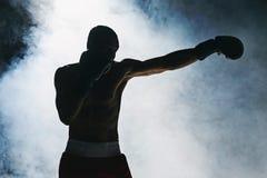 Afro amerykański męski bokser Obrazy Stock