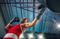 Afro amerykański męski bokser Zdjęcie Stock