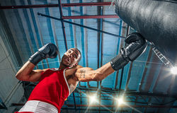 Afro amerykański męski bokser Obrazy Royalty Free
