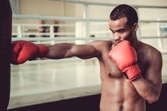 Afro amerykanina bokser Obraz Royalty Free