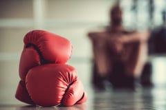 Afro amerykanina bokser Zdjęcia Stock