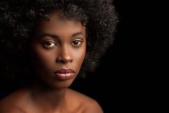 Afro piękno Zdjęcie Stock