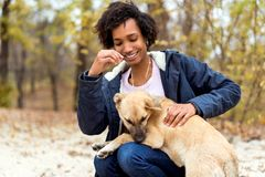Afroamerican girl in autumn park playing with her dog.  stock photography