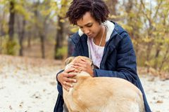 Afroamerican girl in autumn park playing with her dog. / royalty free stock photos