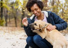 Afroamerican girl in autumn park playing with her dog.  stock photo