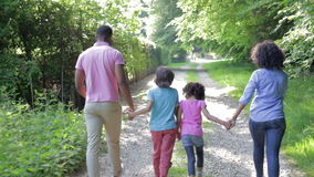 Afroamerikaner-Familie, die in Landschaft geht stock footage