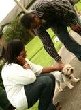 Afroamerikaner-Paare Pettin Lizenzfreies Stockfoto