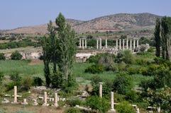Afrodisias/Aphrodisias forntida stad, Turkiet royaltyfri fotografi