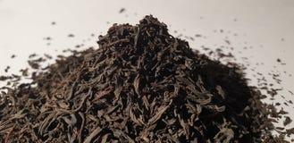 Afrouxe o chá preto Chá preto seco fotos de stock royalty free