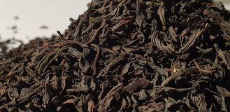 Afrouxe o chá preto Chá preto seco imagens de stock royalty free