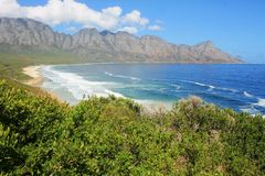 afryce kanonkop słynnych góry do południowego malowniczego winnicę wiosna zdjęcie stock