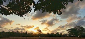 afryce słońca Obraz Stock