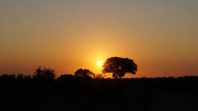 afryce wschód słońca Zdjęcie Stock