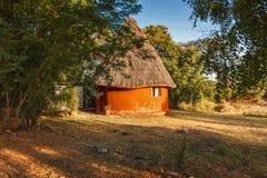 Afrykańska stróżówka na jeziornym Baringo, Kenja - zdjęcie royalty free