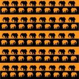 Afrykańska tekstura z słoniami Obraz Royalty Free