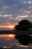 Afrykański Sundowner zmierzch obrazy stock