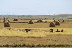 Afrykański wiejski życie i ziemia uprawna Fotografia Stock