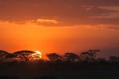 Afrykański wschód słońca Amboseli, Kenja Fotografia Royalty Free