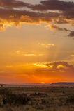 Afrykański zmierzch w Maasai Mara Zdjęcie Royalty Free