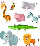 Afrykański zwierzęcy set Obraz Royalty Free