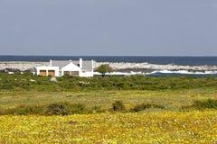 afrykańskich linii brzegowych na południe Zdjęcie Royalty Free