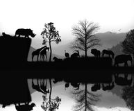 Afrykańskich zwierząt krajobrazowy moment Fotografia Stock