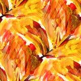Afryka bezszwowej tekstury obrazka pomarańczowy abstrakt Obraz Stock