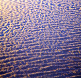 Afryka brown piasek diuna w Sahara Morocco pustyni linii Fotografia Stock