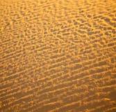 Afryka brown piasek diuna w Sahara Morocco pustyni linii Obraz Stock