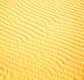 Afryka brown piasek diuna w Sahara Morocco pustyni linii Fotografia Royalty Free