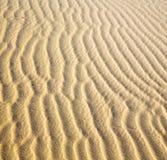 Afryka brown piasek diuna w Sahara Morocco pustyni linii Zdjęcie Royalty Free