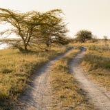 Afryka drogi zmierzch Obraz Royalty Free
