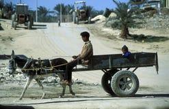 AFRYKA EGIPT SAHARA SIWA ludzie Zdjęcie Stock