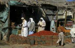 AFRYKA EGIPT SAHARA SIWA oaza Zdjęcie Royalty Free