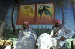 AFRYKA EGIPT SAHARA SIWA oaza Zdjęcia Royalty Free