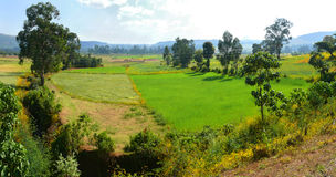 Afryka, Etiopia. Krajobraz Afrykańska natura. Góry, va Zdjęcia Stock