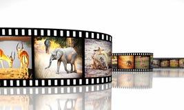 Afryka film Zdjęcia Stock