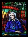 Afryka okno, witraż w Votiv Kirche w Wiedeń Obrazy Stock