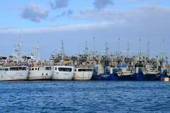 Afryka, Portowy Louis miasto w Mauritius wyspie Zdjęcia Royalty Free