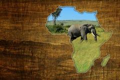 Afryka przyrody mapy projekt Obraz Royalty Free