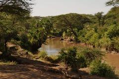 Afryka rzeka z udziałami luksusowa roślinność Fotografia Royalty Free